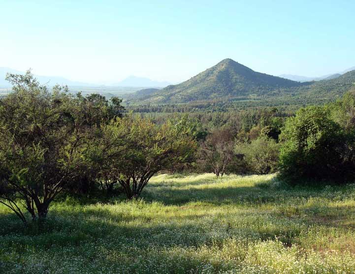 Cerro-Mocho