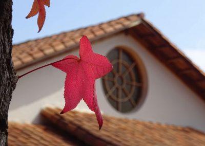 Roseton-otoño